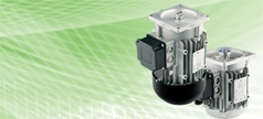 Products Ravel Srl Products Ravel Srl Ravel Electric Motors Are Synonymous With Quality